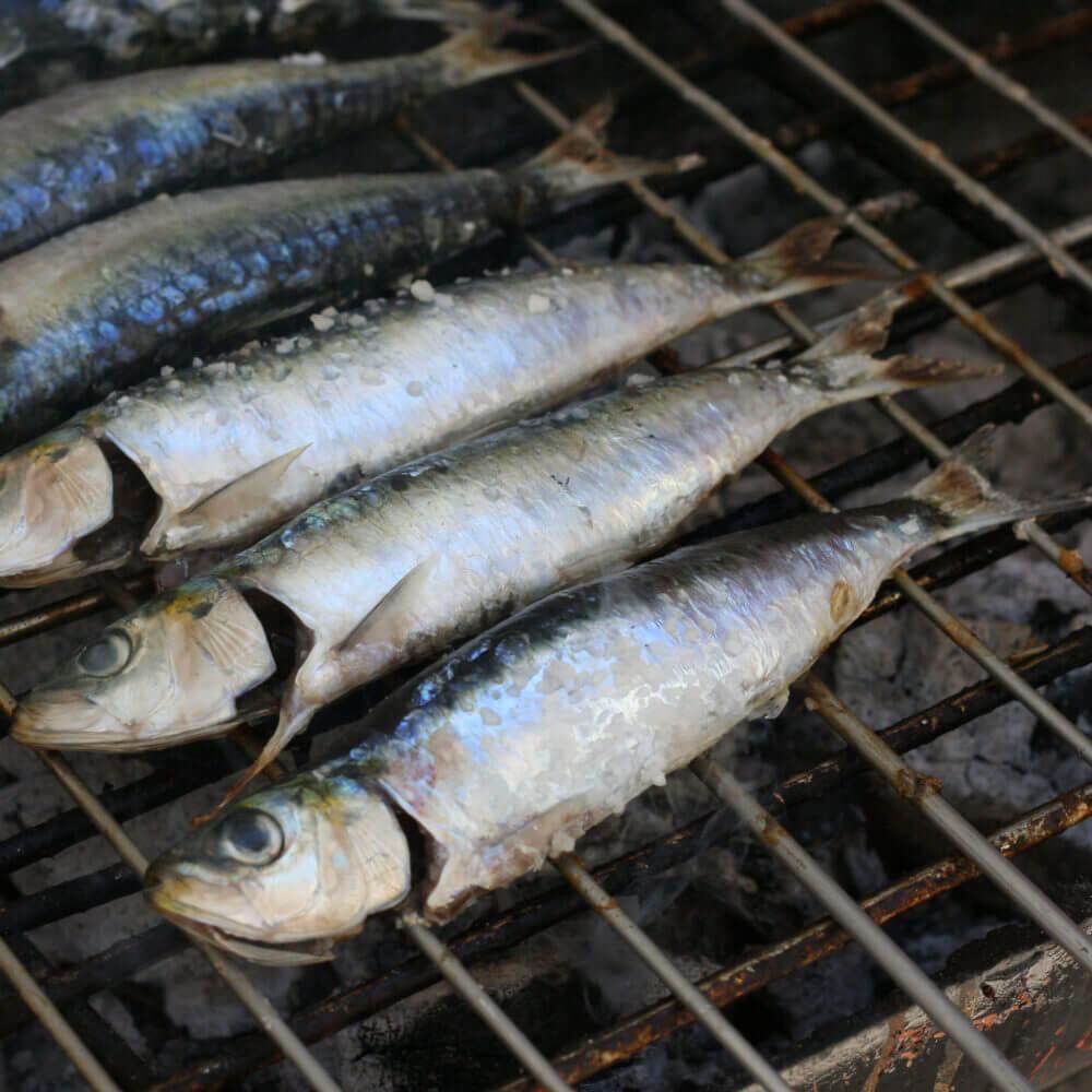Delicie-se com o melhor peixe fresco grelhado da região de Sesimbra