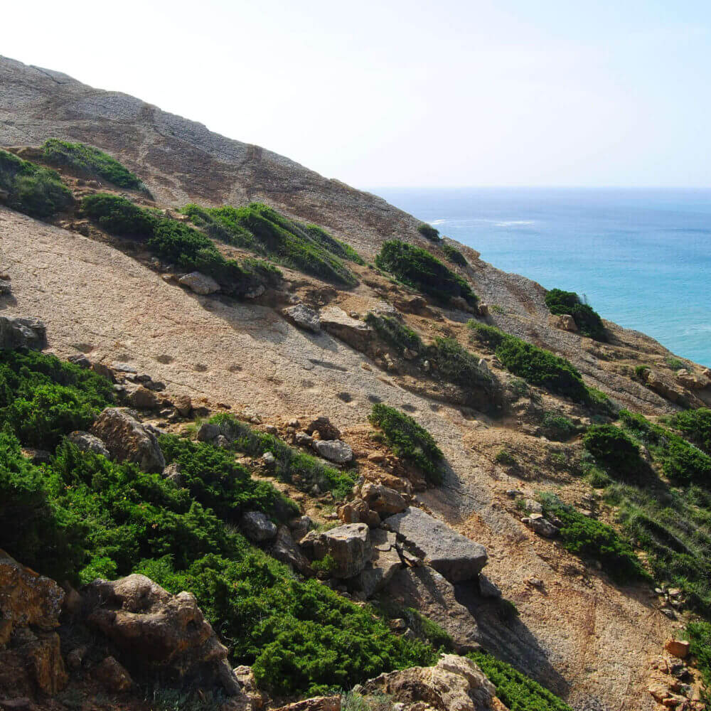 Pegadas de dinossauros nas falésias norte do Cabo Espichel